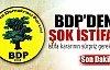 Şerafettin Halis BDP'den istifa etti