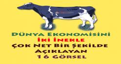 Dünya Ekonomisini İki İnekle Açıklayan 16 Görsel