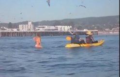 Denizde sörf yapan kadının karşısına devasa balina çıkarsa...
