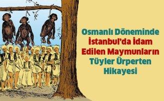 İstanbul'da İdam Edilen Maymunların Hikayesi