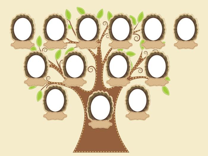 Soy Ağacı Nasıl Sorgulanır Ve Nasıl Bulunur